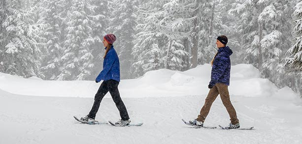 Two people snow-shoeing in the woods