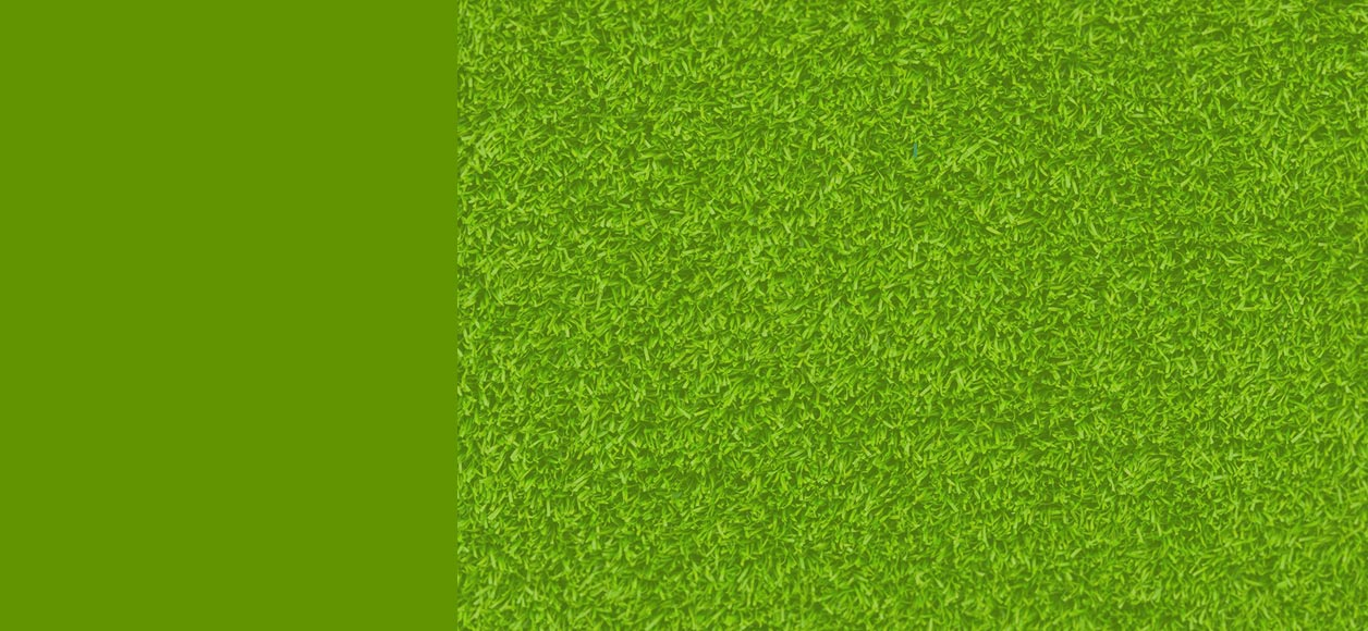 Spring background image with grass