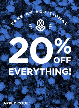Take an Additional 20% off Everything! Use code THINKSPRING.